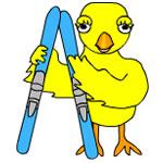 Ski Chick