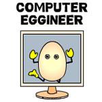 Computer Eggineer