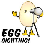 Egg Sighting