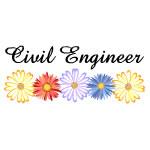 Civil Engineer Asters