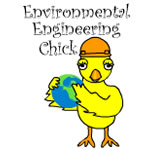 Environmental Engineering Chick