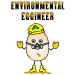 Environmental Eggineer