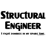 Structural Engineer Zombie Fighter