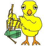 Bagpipe Chick