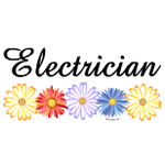 Electrician Asters