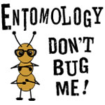 Entomology Bug